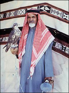 Sheikh with falcon